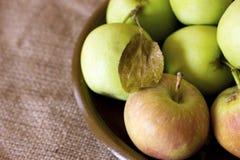 在黏土的绿色和红色庭院苹果变褐盘 库存照片