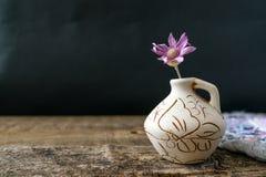 在黏土花瓶的一朵淡紫色花Xeranthemum在木纹理后面 库存图片