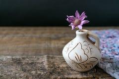 在黏土花瓶的一朵淡紫色花Xeranthemum在木纹理后面 免版税库存图片