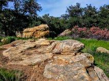在黑星峡谷的风景风景在Silverado加利福尼亚 图库摄影