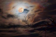 在黑暗的天空的满月 库存图片