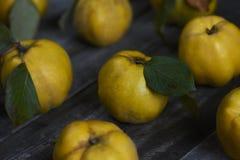 在黑暗的木背景的很多苹果柑橘 顶视图 免版税库存图片
