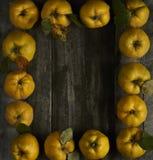 在黑暗的木背景的很多苹果柑橘 顶视图 免版税库存照片