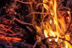 在黑暗的烟火焰和云彩包括的夜整个面积的森林野火  被变形的细节交付高温和 免版税库存图片