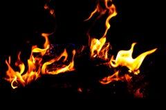 在黑暗的背景的火火焰 免版税图库摄影