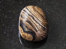 在黑暗的背景的翻滚的stromatolite宝石 库存照片