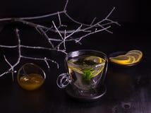 在黑暗的背景的薄荷的柠檬茶 库存照片