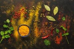 在黑暗的背景的香料,姜黄,番红花,豆蔻果实,辣椒,辣椒粉,香菜,月桂叶 各种各样色的香料 库存图片