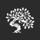 在黑暗的背景隔绝的巨大和神圣的橡树剪影商标徽章 皇族释放例证