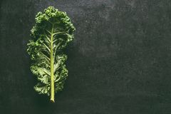 在黑暗的背景,与拷贝空间的顶视图的绿色无头甘蓝叶子 健康戒毒所菜 干净的吃的和节食的概念 顶层 免版税库存图片