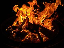在黑暗的黑野营的火 免版税库存图片