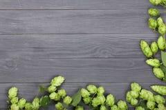 在黑木背景的新鲜的绿色啤酒花球果树 啤酒生产的成份 与拷贝空间的顶视图您的文本的 免版税库存照片