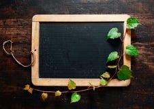 在黑板的落后的叶子 库存图片