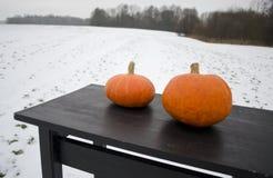 在黑桌上的两个南瓜在农场在冬天 库存图片