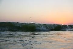 在黑海的岸的温暖的夏天日落 免版税库存照片