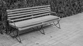 在黑白图象的公园倒空长木凳 库存照片