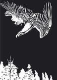 在黑白的老鹰飞行 免版税库存照片