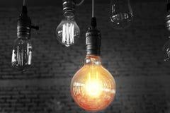 在黑白背景的电灯泡 库存图片