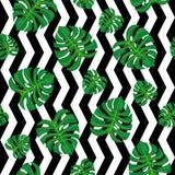在黑白背景的绿色叶子 无缝的模式 免版税库存照片