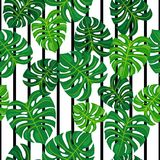 在黑白背景的绿色叶子 无缝的模式 免版税库存图片