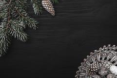 在黑背景、一棵杉树与锥体和一个篮子与锥体 免版税库存图片