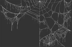 在黑背景上的大白色被撕毁的蜘蛛网 万圣夜风景 库存例证