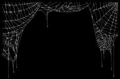 在黑背景上的白色被撕毁的蜘蛛网 皇族释放例证