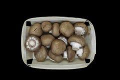 在黑背景安置在木篮子和隔绝的棕色蘑菇蘑菇顶视图  免版税图库摄影