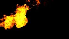 在黑背景慢动作的火火焰喷射器 股票视频