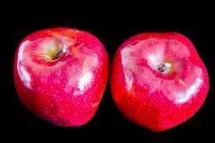 在黑背景的两个红色成熟苹果 免版税库存图片