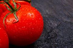 在黑背景的成熟,开胃明亮的蕃茄 免版税库存照片