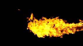 在黑背景的火火焰喷射器 股票视频
