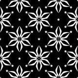 在黑背景的白色花卉无缝的样式 免版税库存图片