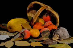 在黑背景的秋天静物画 免版税库存图片