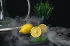 在黑背景隔绝的柠檬和蓬蒿叶子 免版税库存图片