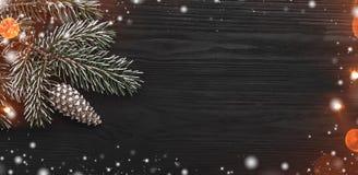 在黑背景,与一个锥体的一棵杉树,水平地,与雪花的作用 免版税图库摄影