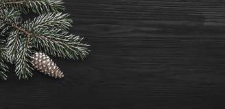 在黑背景,与锥体的一棵杉树,水平地 假日消息的空间 免版税库存图片