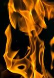 在黑色关闭的火抽象背景 库存照片