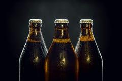 在黑色的三个凉快的啤酒瓶 图库摄影