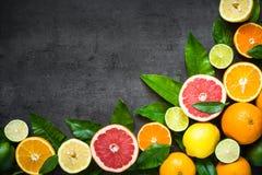在黑色的新鲜的柑桔分类 图库摄影