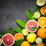 在黑色的新鲜的柑桔分类 免版税图库摄影