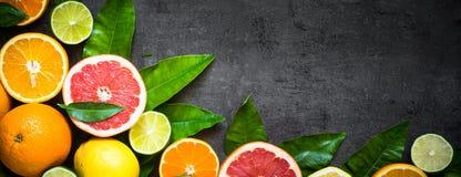 在黑色的新鲜的柑桔分类 免版税库存照片