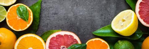 在黑色的新鲜的柑桔分类 库存照片