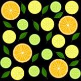 在黑色的柑橘无缝的样式 向量例证