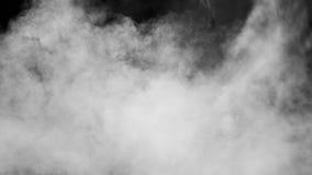 在黑色背景的空白烟 股票视频