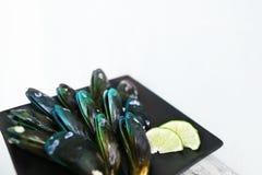 在黑platge,在豪华餐馆的鲜美开胃菜的健康浅兰的异乎寻常的软体动物食物 免版税库存图片