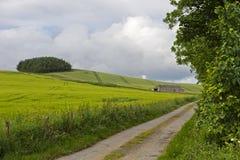 在鼓笛东方Neuk的农村风景  免版税库存照片