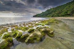 在龙目岛海滩,印度尼西亚的岩石青苔 免版税库存照片