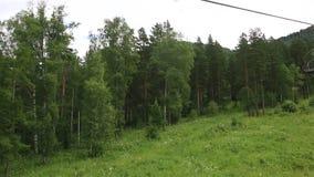 在登上浅Sinyuha的滑雪驾空滑车 阿尔泰共和国 影视素材