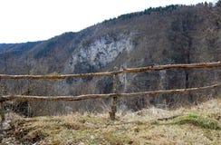 在登上的篱芭 免版税库存照片